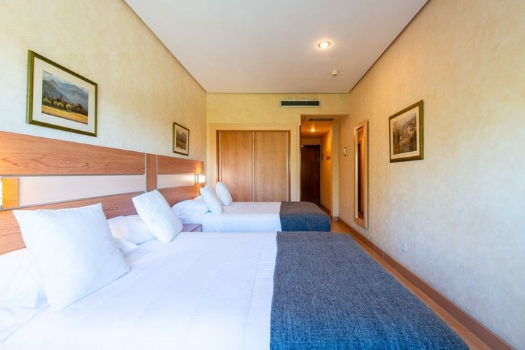 Double room hotel faranda florida norte madrid